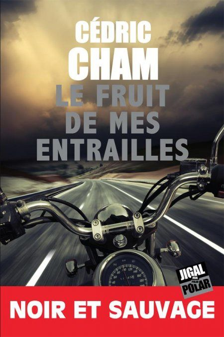 """Thomas a lu un roman """"Noir et sauvage"""""""