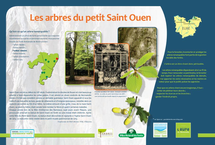 Mise en valeur des arbres remarquables de la forêt de Bord, notamment par l'ONF : ici le hêtre du Petit-Saint-Ouen de Léry (2018).