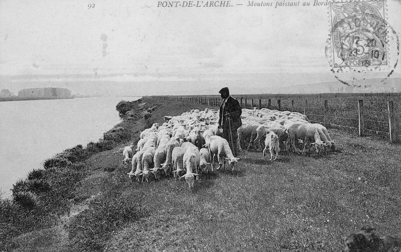 Carte postale des années 1910 située du côté du port au Chanvre, voire de la Maison rouge. L'espace a, semble-t-il, été déserté par les hommes, hormis quelques paisibles passages comme ici un pâtre, son chien (en bas à droite) et son troupeau.