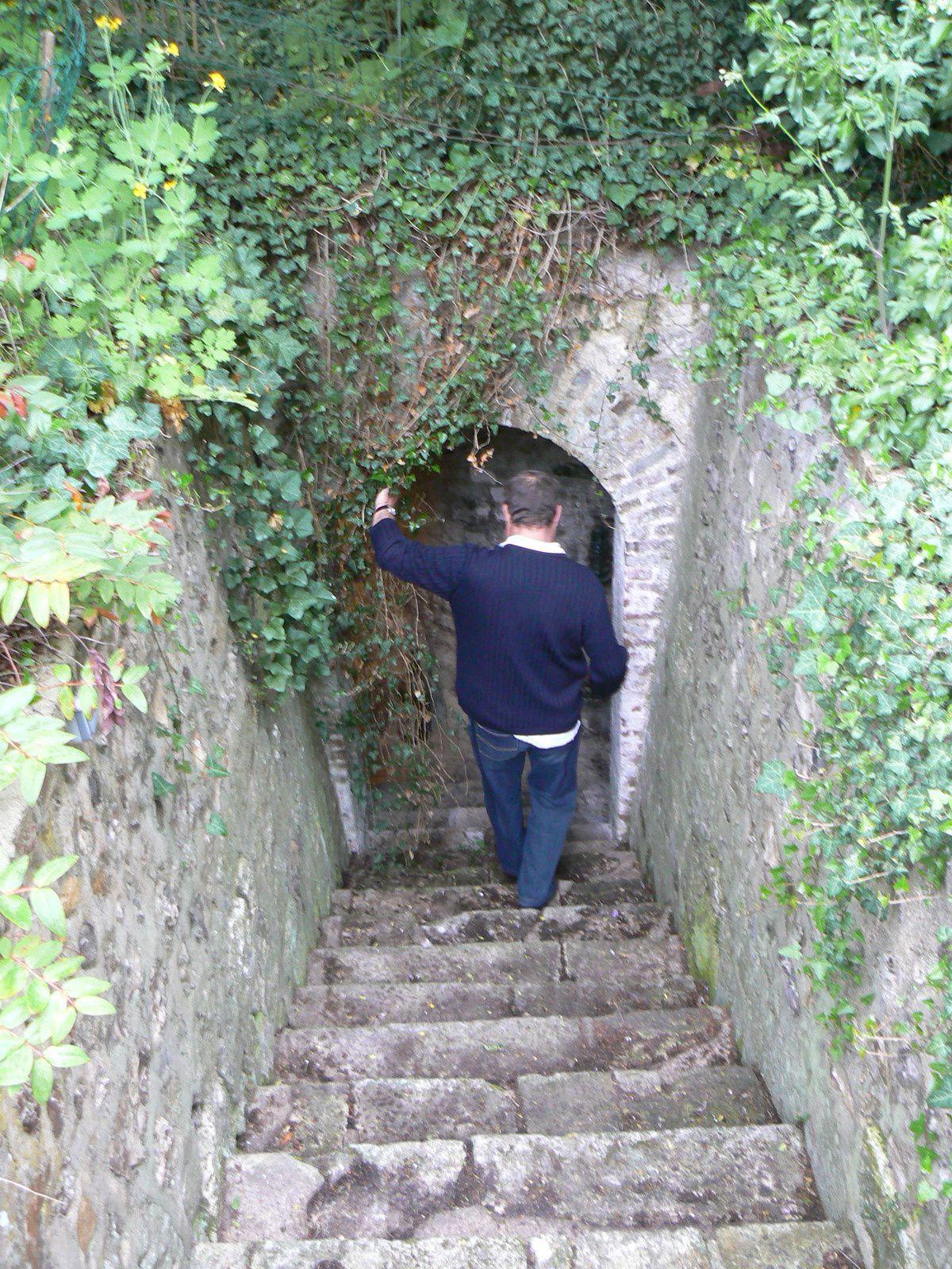 Différentes vues de la cave de la tour de Crosne (clichés Armand Launay, mai 2010). Il se peut qu'elle ait servi de cave au manoir du roi et, même, de passage entre celui-ci et la tour.