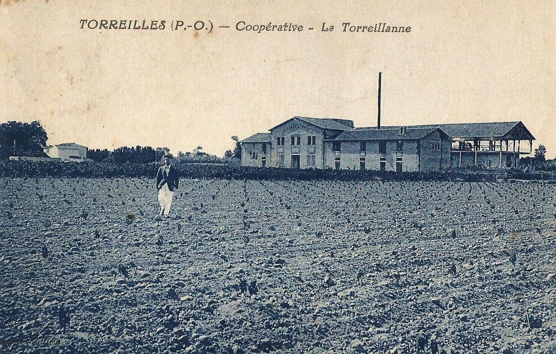 Distillerie coopérative de Torreilles (Pyrénées-Orientales)
