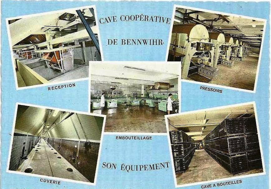 Cave coopérative de Bennwihr.