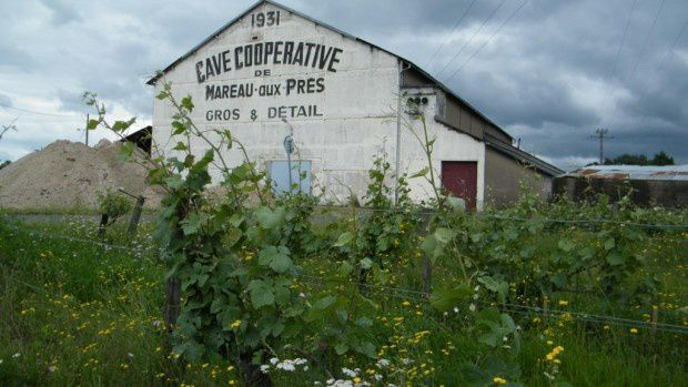 Cave coopérative de Mareau-aux-Prés