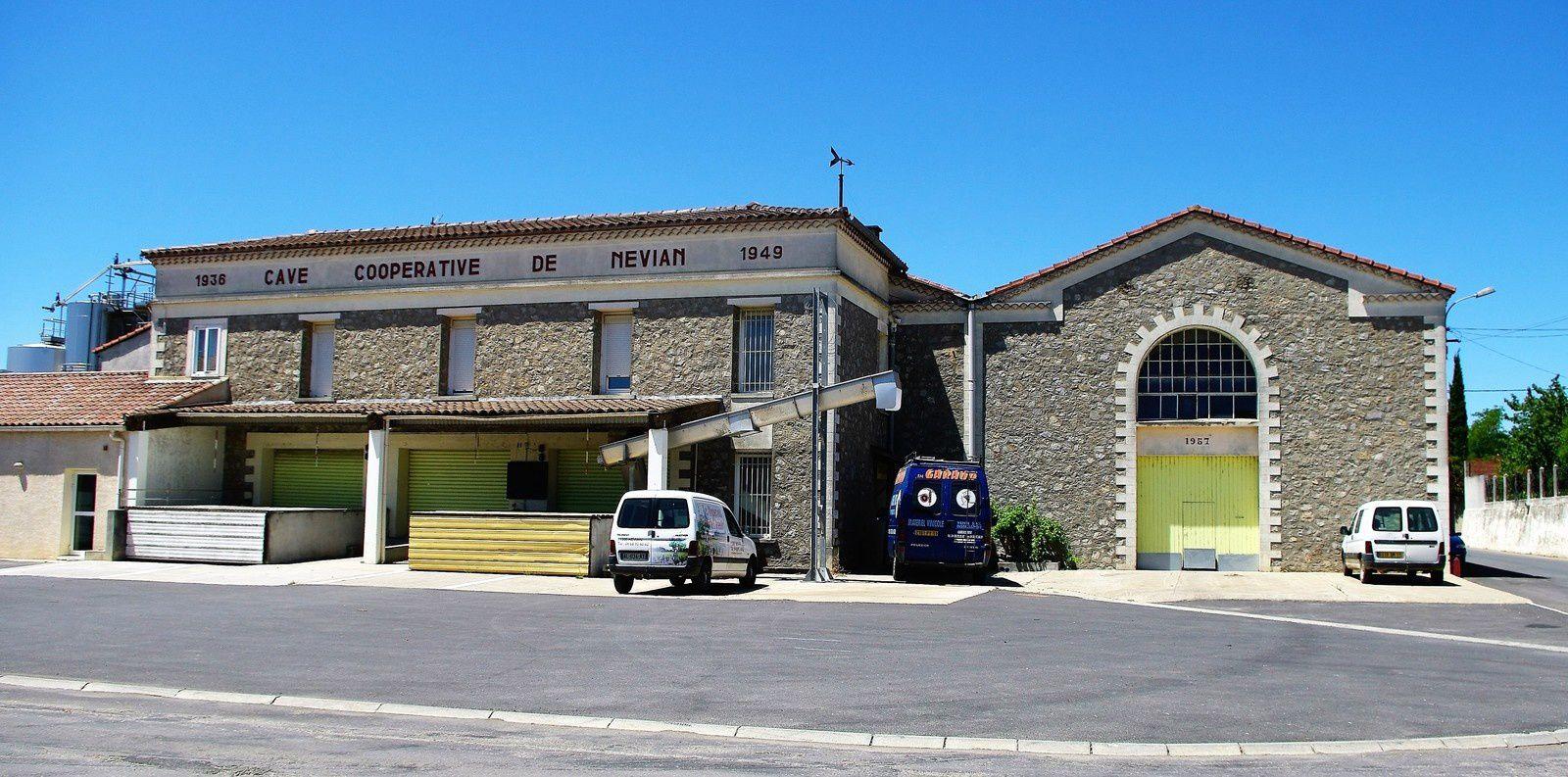 Cave coopérative de Névian (Aude).