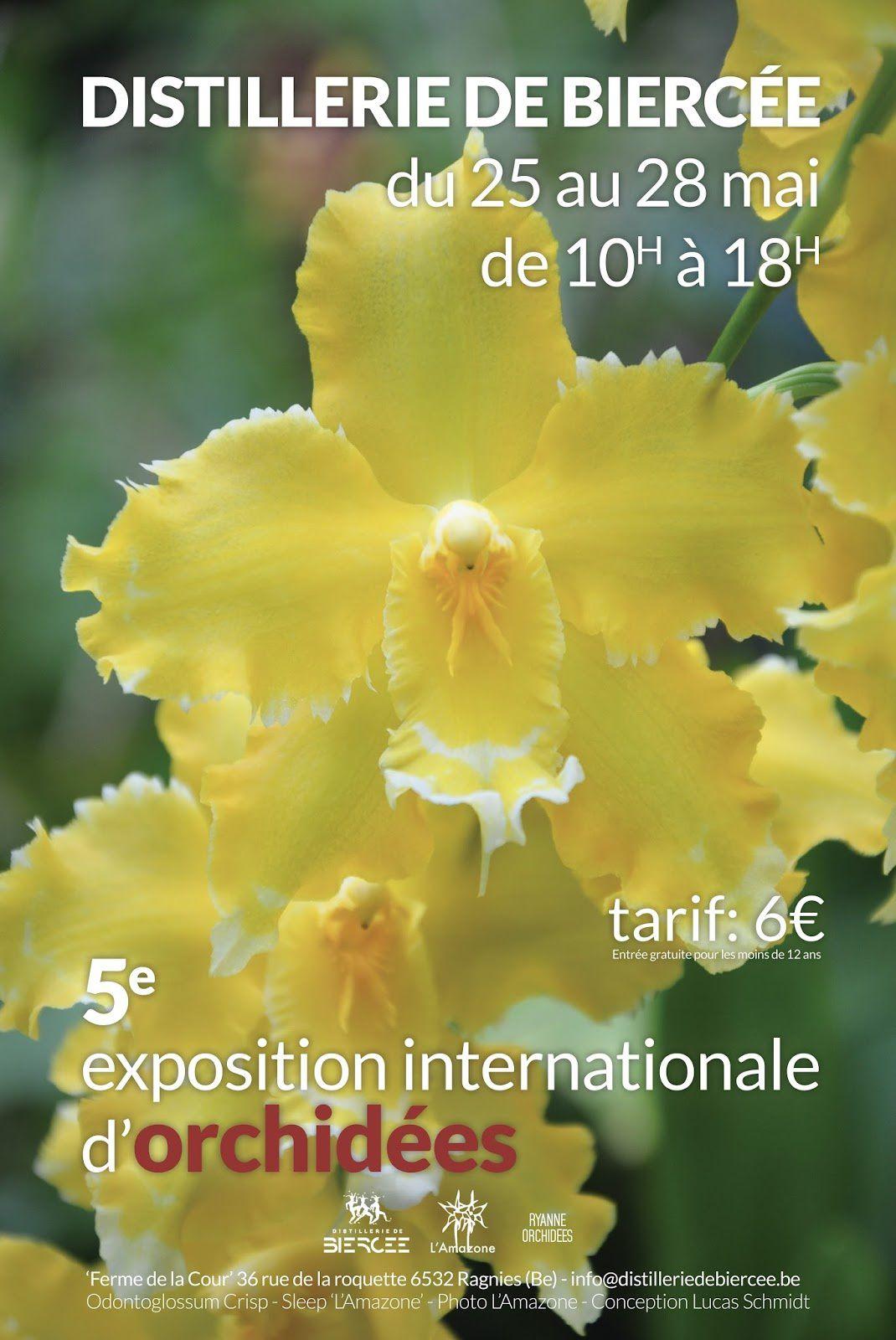 5ème exposition internationale d'orchidées à la distillerie de Biercée