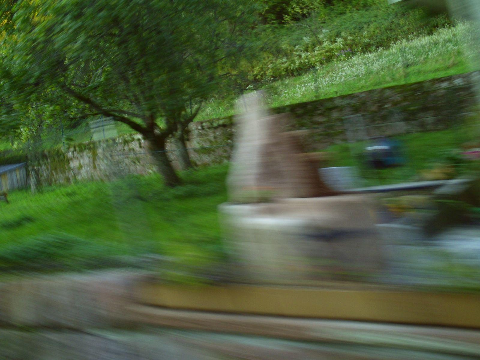 Goldwing Unsersbande - Jolie ballade en forêt noire au Alte Tränke