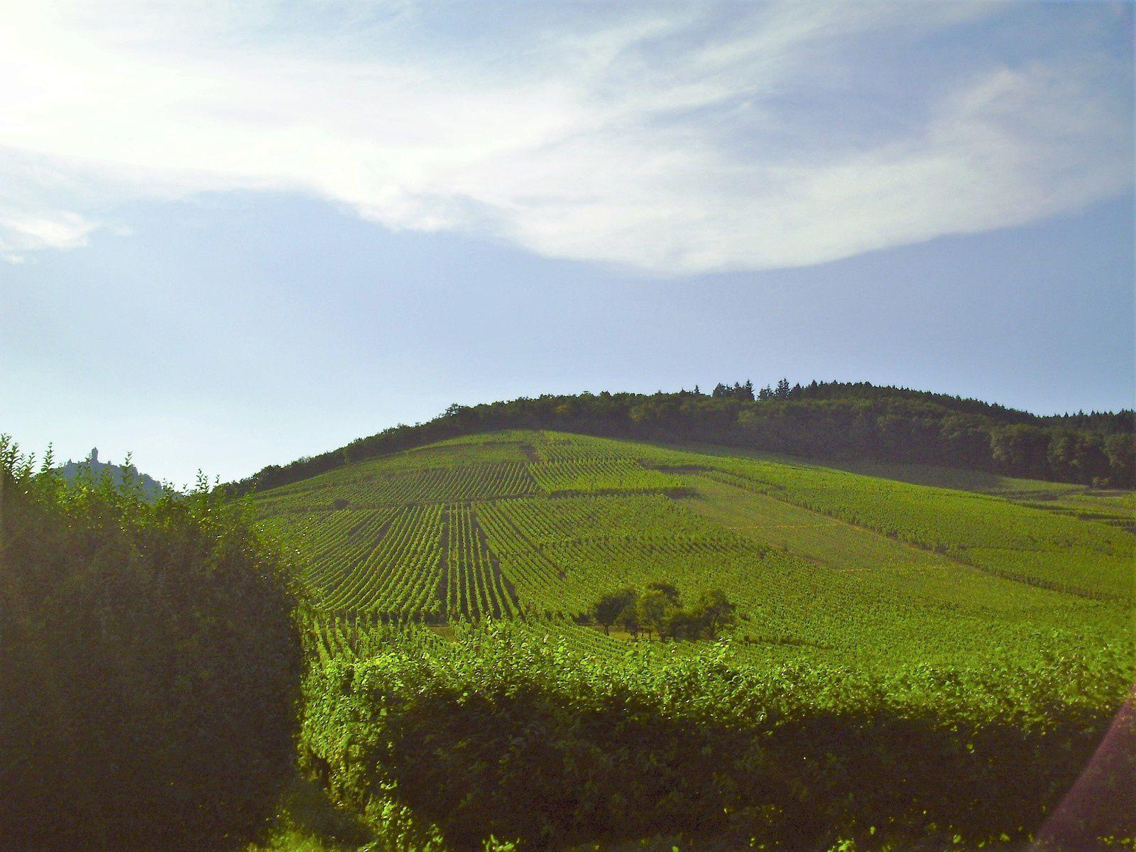 Goldwing - ballade dans les Vosges lac de Xonrupt longemer