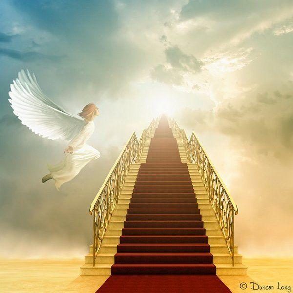 Top 10 de fausses croyances : Nous sommes tous enfants de Dieu (1.10)