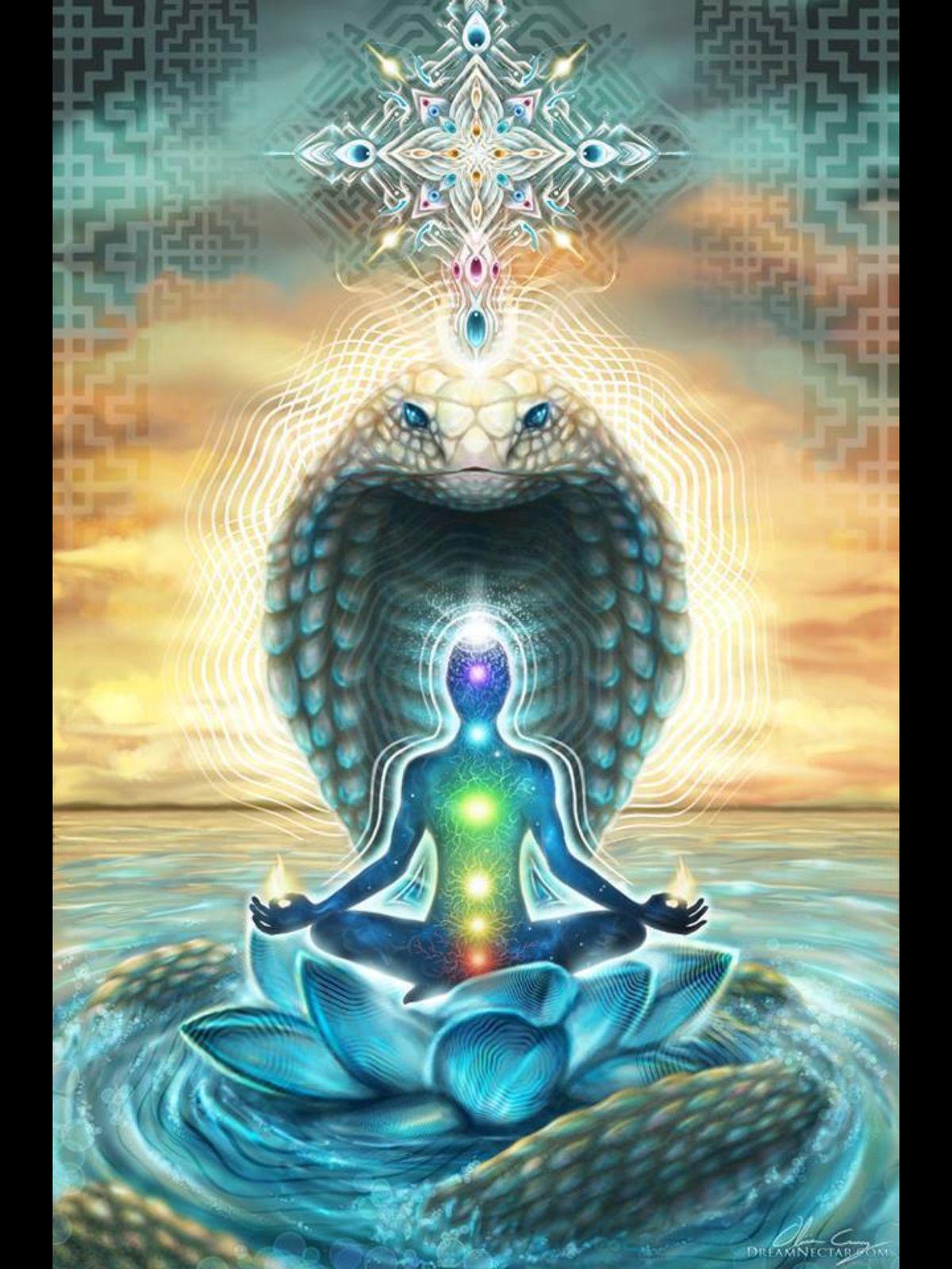 Kundalini : Ils invitent le Serpent dans leur colonne vertébrale