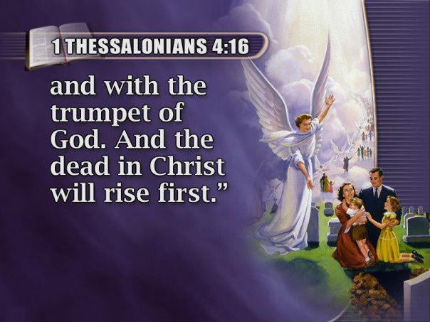 2014 commence avec ses premières prophéties