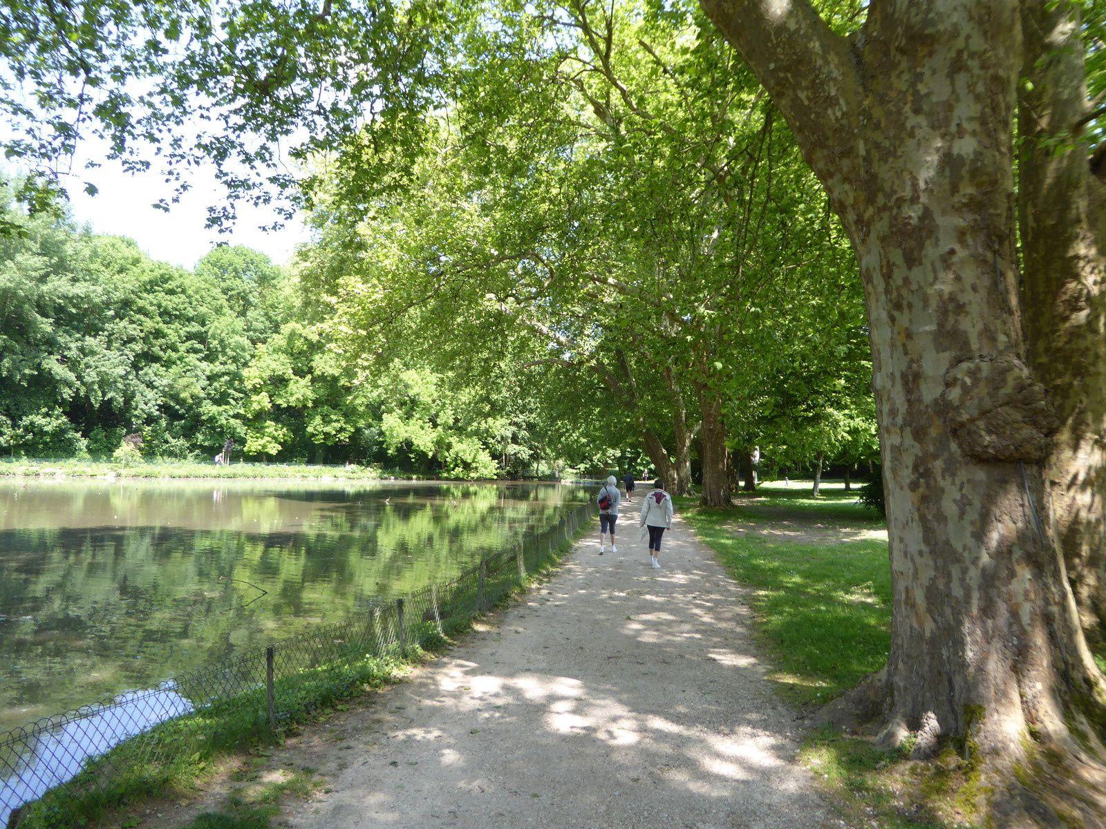 La Loire à Vélo Beaugency Tours suite.