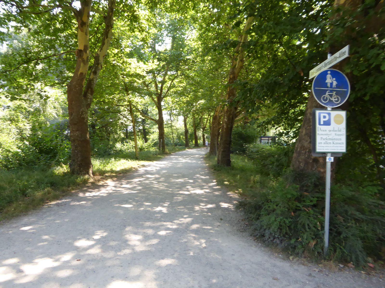 Lac de Constance : Bodensee-Radweg