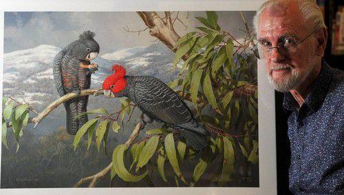 William T. Cooper : le peintre des oiseaux