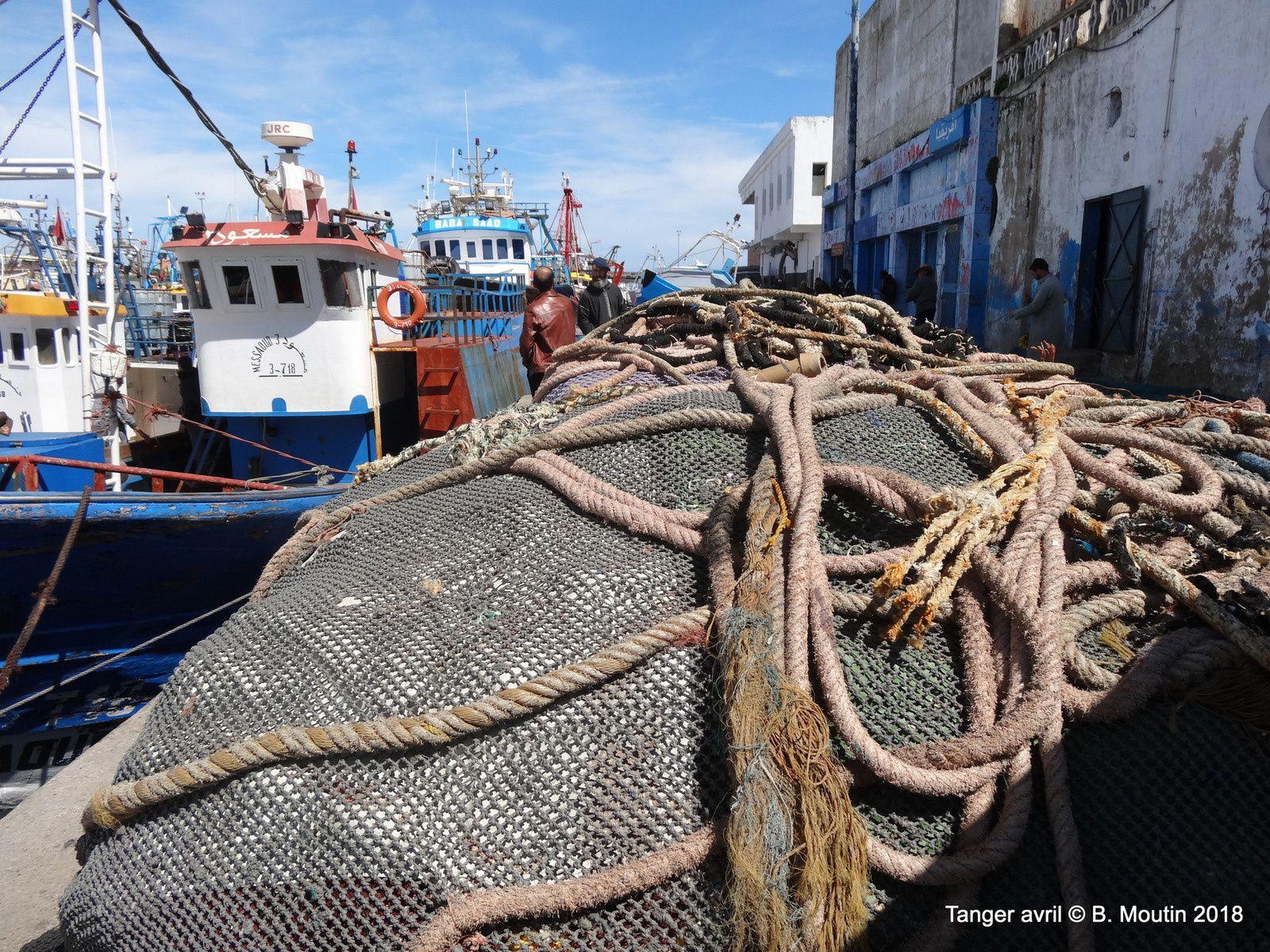 Le port de pêche de Tanger, les ultimes images avant sa démolition ...