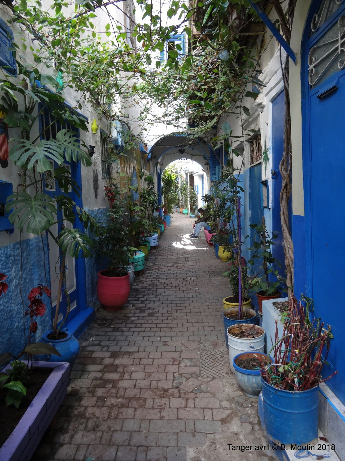 Rue verte dans la Médina de Tanger (6 Photos)