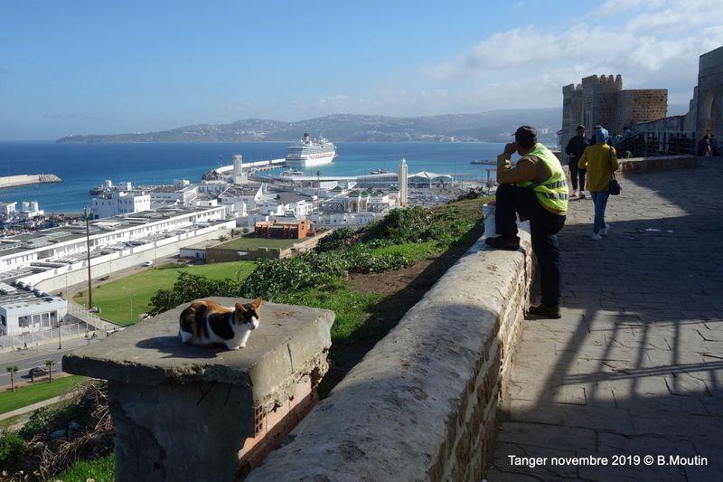 Bateau de croisière à Tanger ... et groupes de touristes