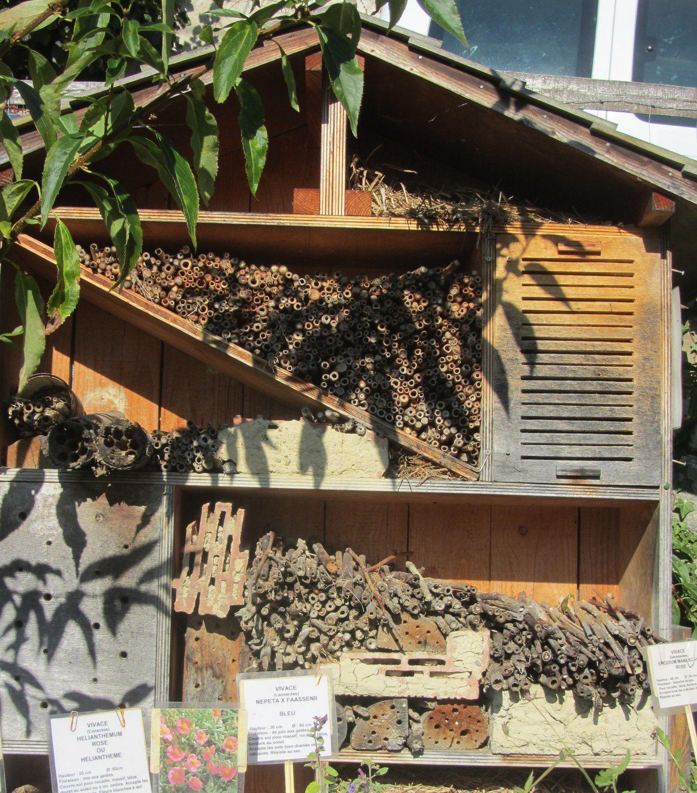 Mais on peut, peut être se rabattre sur cette maison à insectes, si on décide de la fabriquer par soi même §