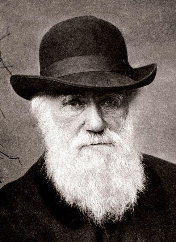 """""""Darwin c'est un naturaliste et paléontologue anglais dont les travaux sur l'évolution des espèces vivantes ont révolutionné la biologie avec son ouvrage De l'origine des espèces paru en 1859"""""""