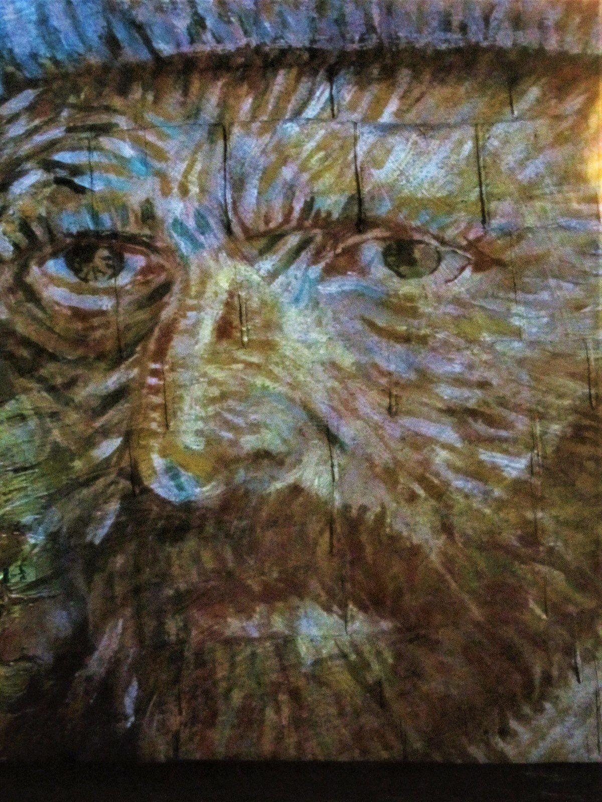 Un regard célèbre .... celui de Van Gogh, rencontré aux Baux de Provence.