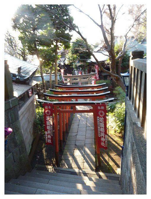 février 2013 : Tokyo, quartier Ueno