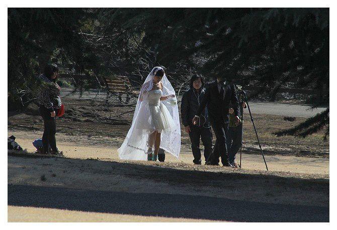 le parc sert de cadre pour les photos de mariage (ou des publicités)