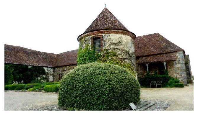 le puits (68 m) au premier plan,  recouvert de végétation en attente de sa margelle disparue; derrière : l'un des premiers pigeonniers de France (1364) ... 1300 boulins (nichoirs à pigeons)
