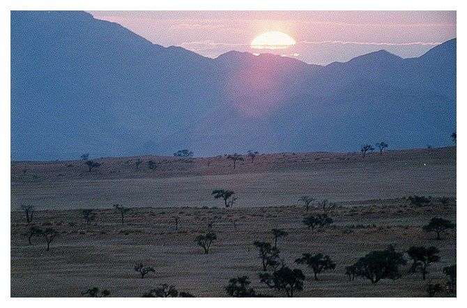 Namibie, Désert du Namib, Tok Tokkie Trail : septembre 1998