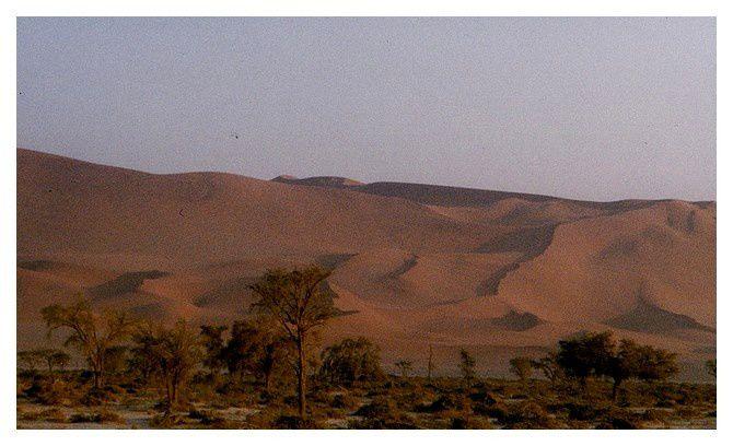Namibie : Sossusvlei, désert du Namib, septembre 1998