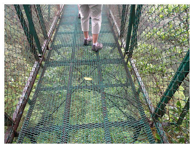 Costa-Rica : jour 7 : Monteverde - Rincon de la Vieja