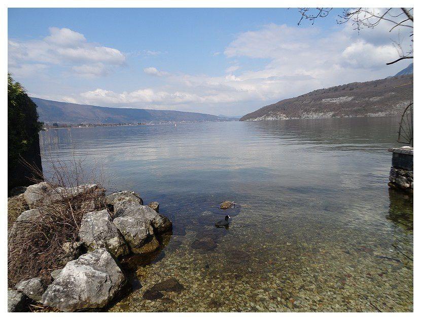 Saint Jorioz (74); Lac d'Annecy; mars 2018
