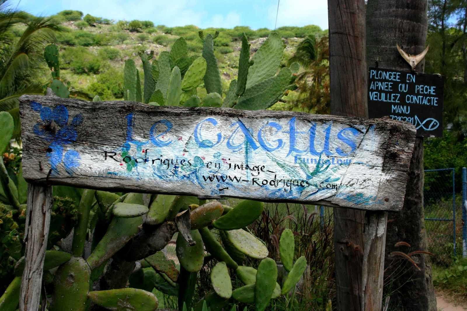 236 - L'île Rodrigues 03, géolocalisation, Le Cactus, Fabrina, Dary, Grand-Baie, Océan Indien, photos GeoMar