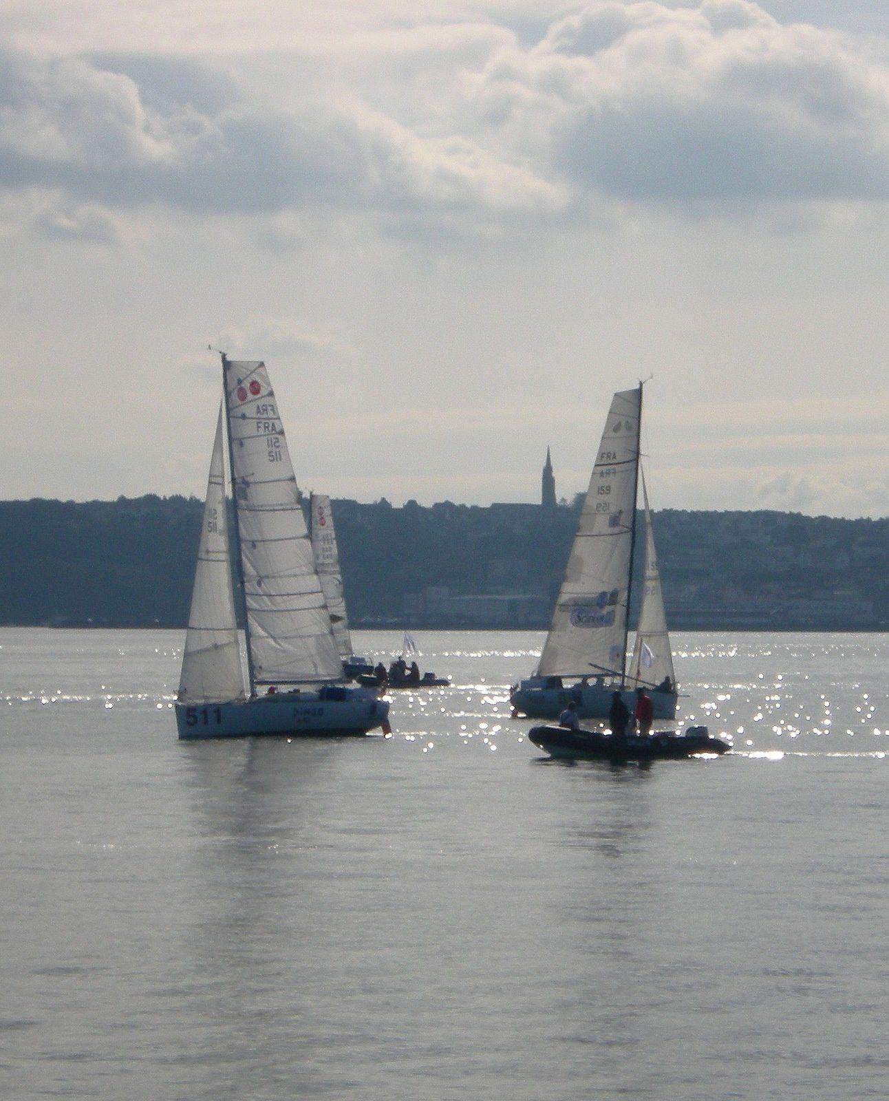 230 bis Mini Transat 2013 Les voiliers 6,50 m Photos en baie de Douarnenez