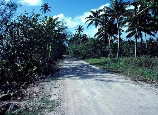 Tubuai, route de ceinture, soupe de corail décembre 1982