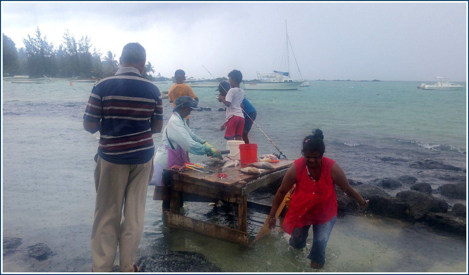 317 - Île Maurice 1er au 11 février 2019 photos © GeoMar plages de Péreybère attente cyclonique FUNANI et GENELA : double cyclones tropicaux Océan Indien