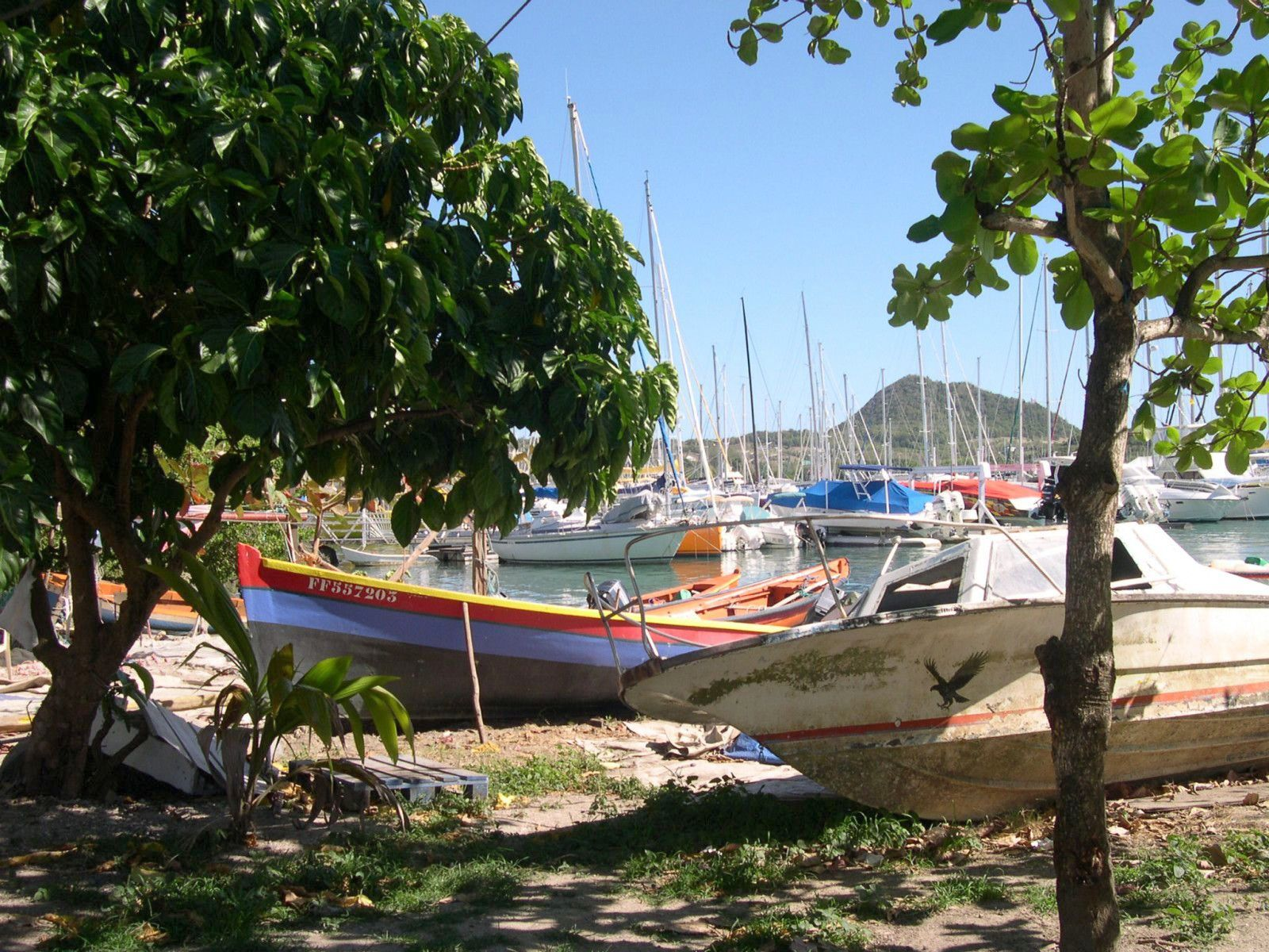 044 -   De Mindelo à la Martinique... transat. voile, nov. 2004, Ovni 345, Skreo, des îles du Cap-Vert aux Antilles, photos GeoMar