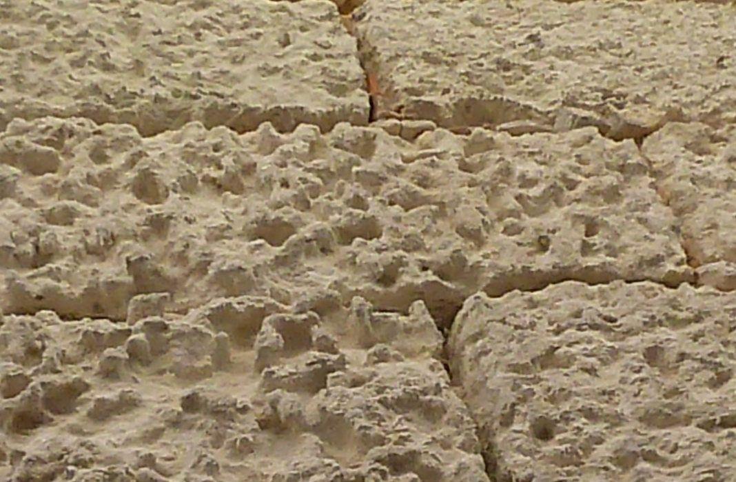 Ces murs qui, petit à petit, font revivre ces traces... une autre vie.