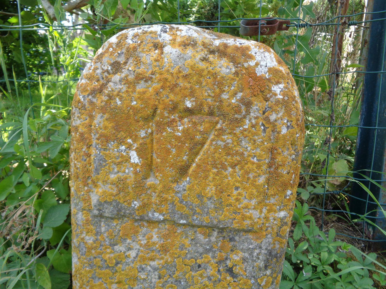 Et bien sûr le patrimoine de pierre, indissociable du genre humain, via la nature.