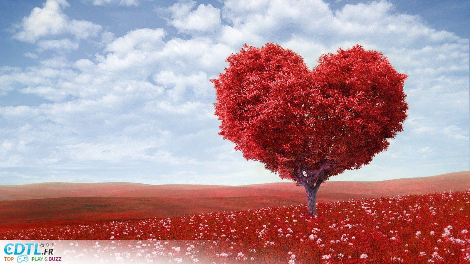 Vivre en Amour