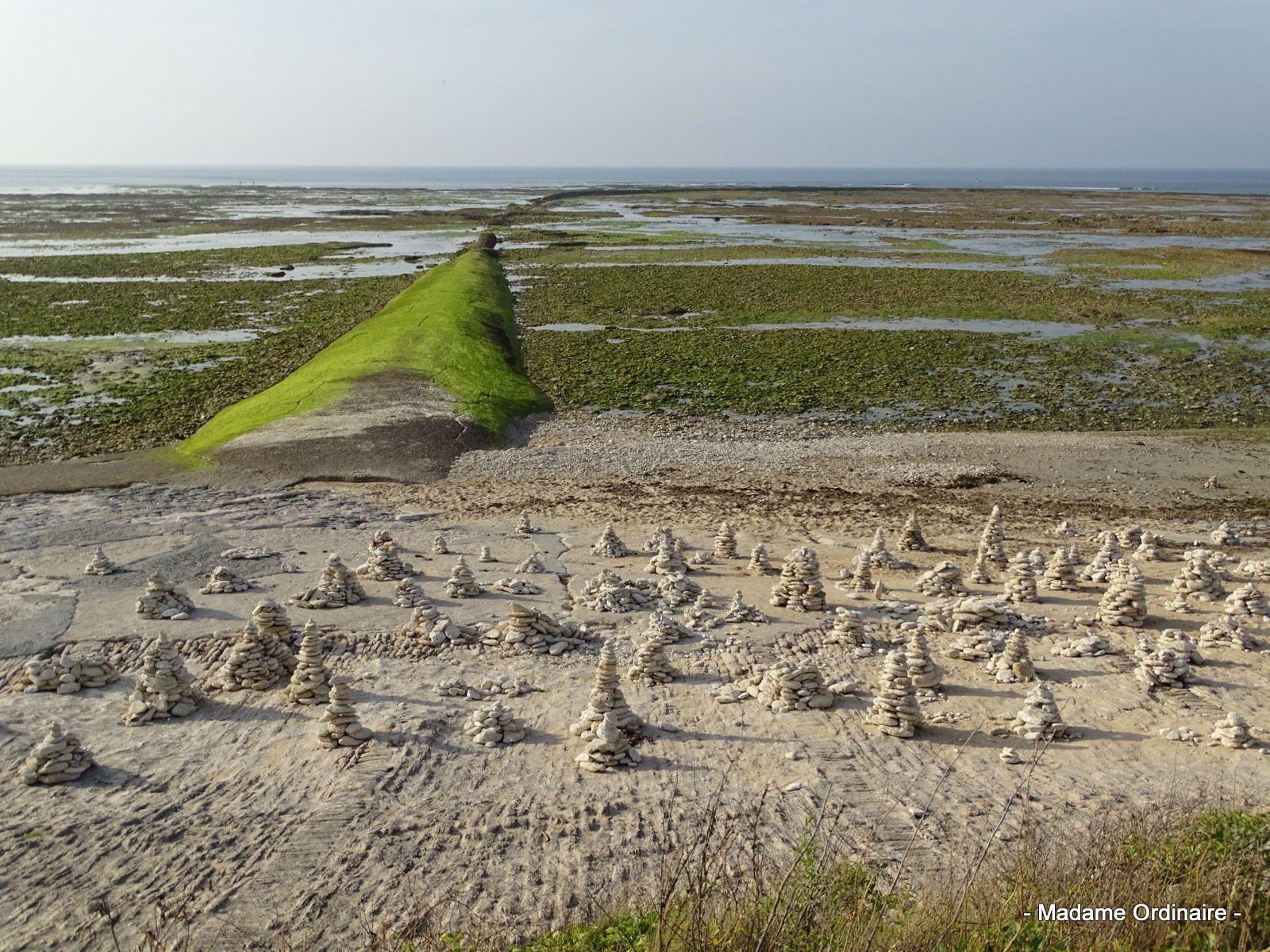 Carte postale estivale : l'île de Ré