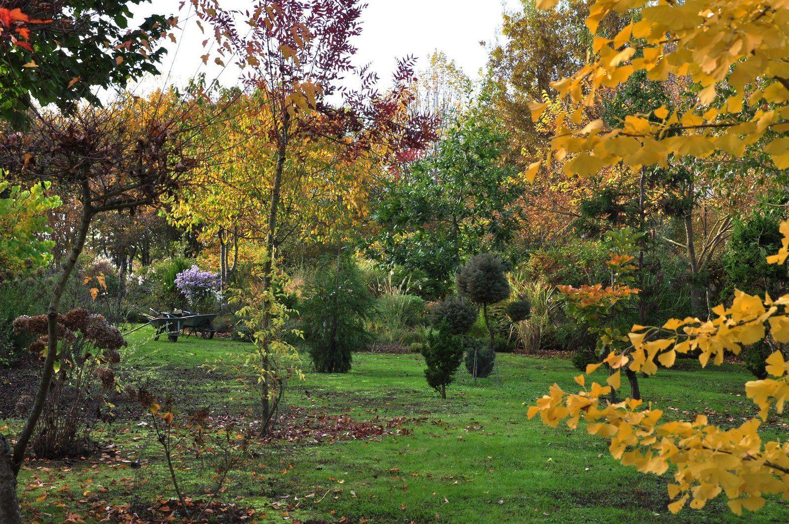 Faits d'automne