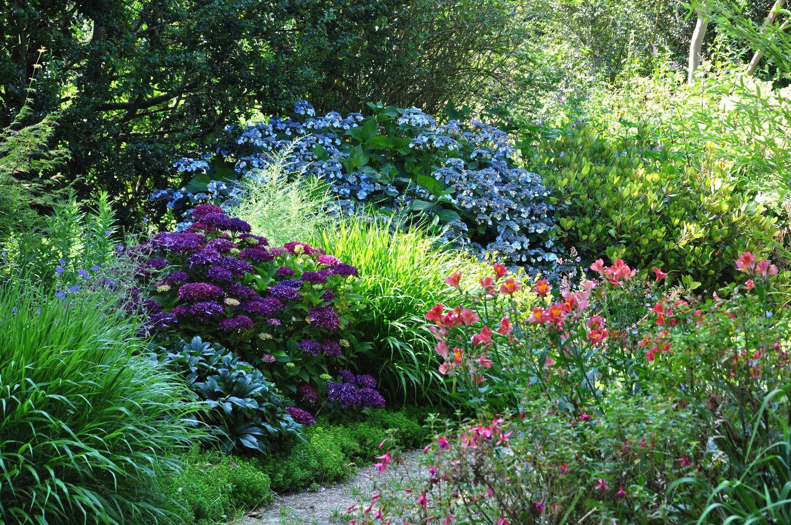 Au jardin des Sittelles on cultive l'humour végétal