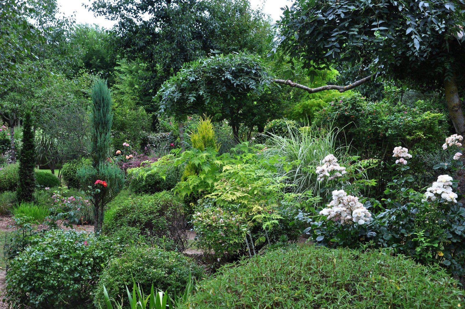 Page estivale au jardin