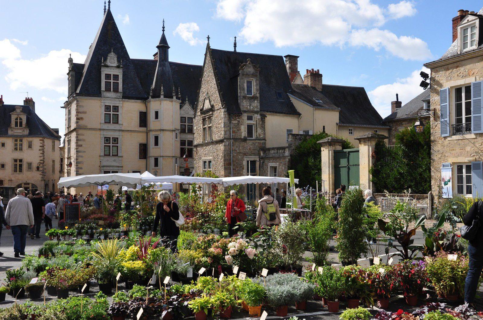 Les végétaux occupent la vieille ville