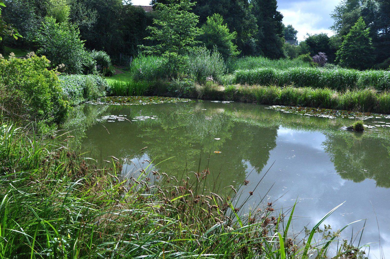 Les jardins de la Sagne comme un hommage à la biodiversité