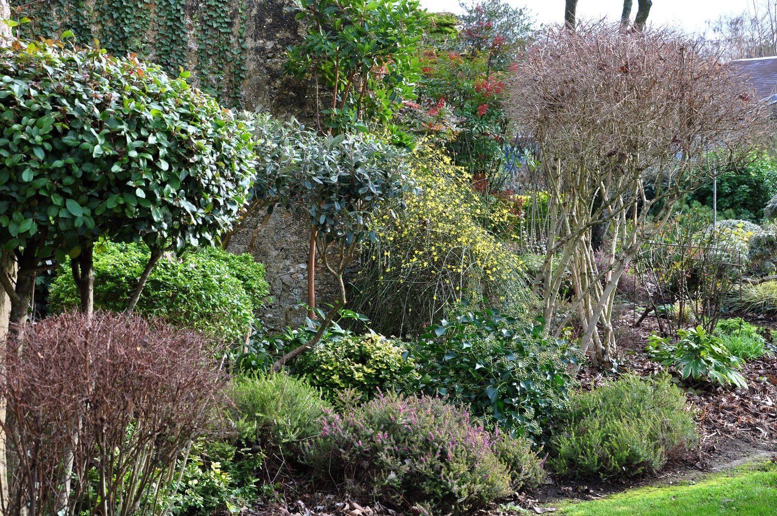 Jardin d'hiver, jardin des verts
