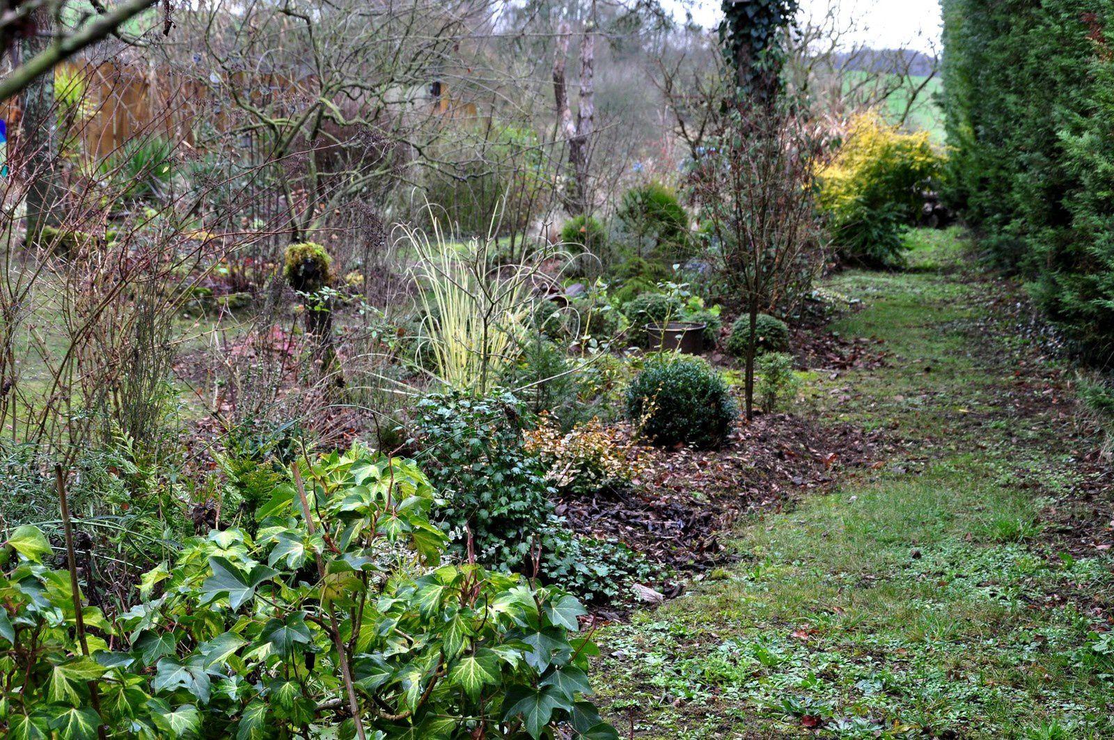 Rencontres jardinières hivernales