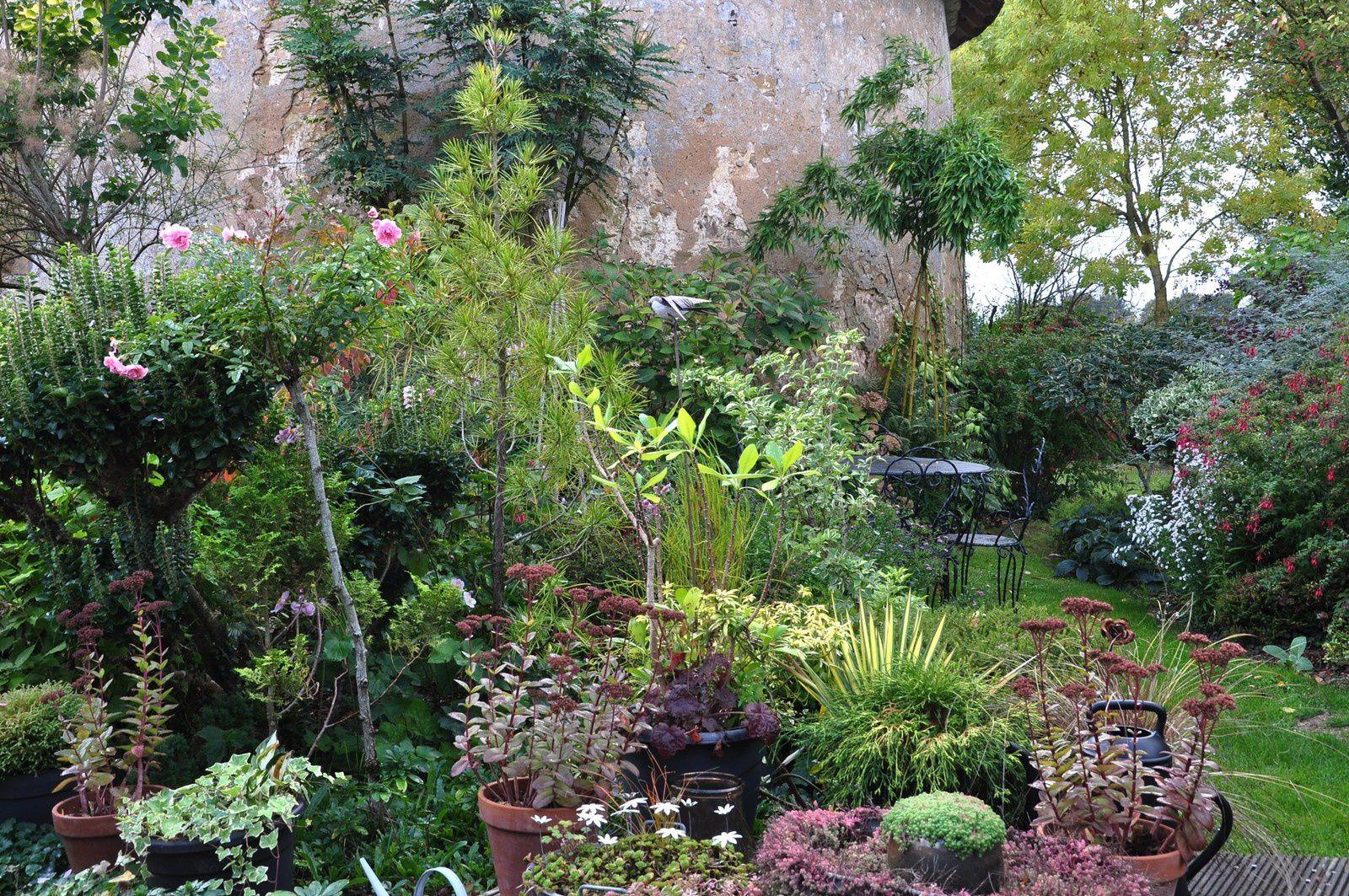 Premières plantations, dernières floraisons