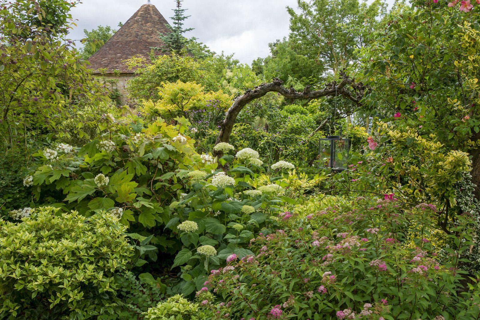 Juin, solstice des couleurs au jardin ?