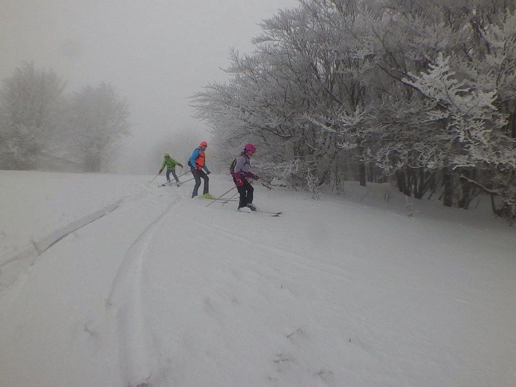 2019: Ça me dit la neige, samedi à la neige.