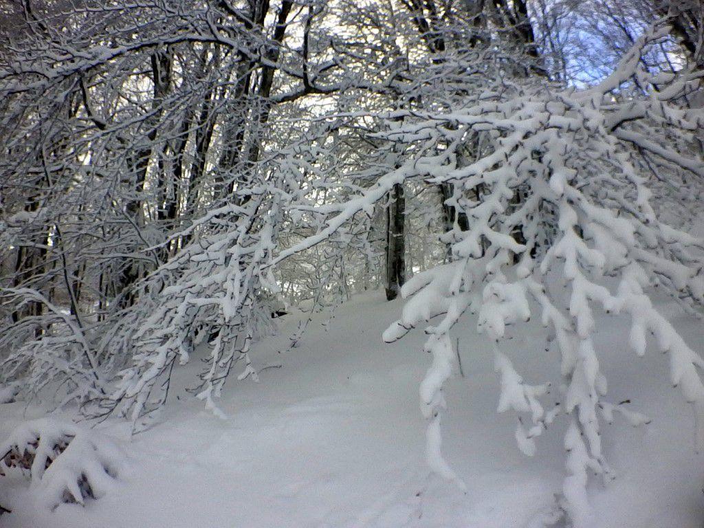 201: On pose tout et on va à la neige!